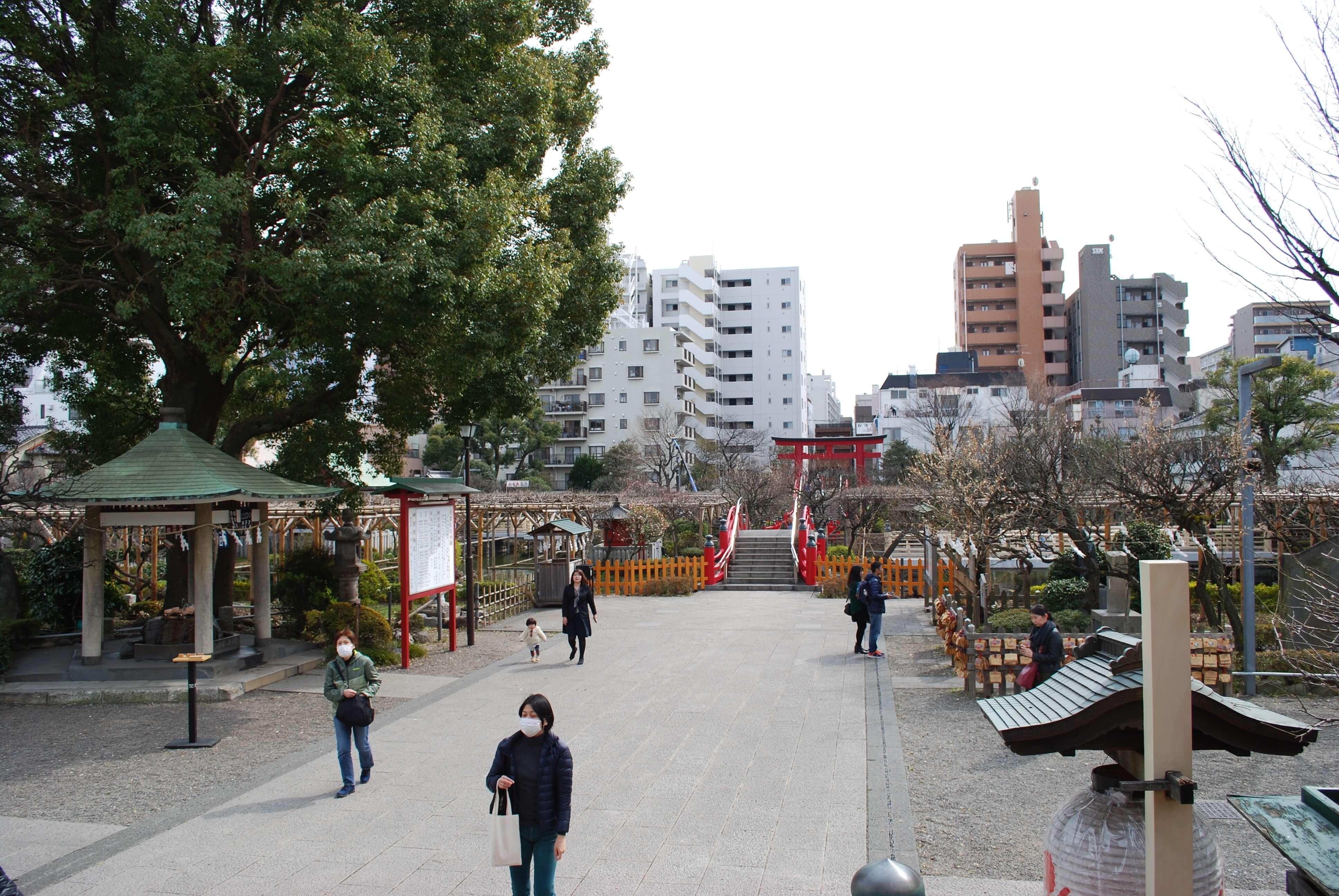Photo of Enjoy Japanese spring time in an old neighborhood at Kameido Tenjin Shrine.