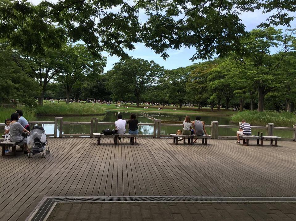 Photo of Tham quan Công viên Yoyogi – Harajuku
