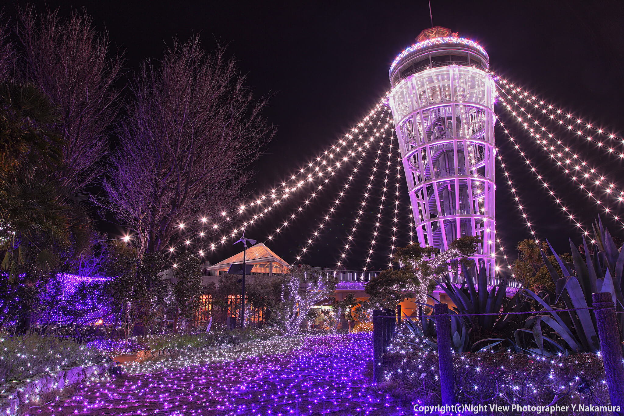 "Photo of Enoshima Illumination ""Jewel of Shonan"" Festival"