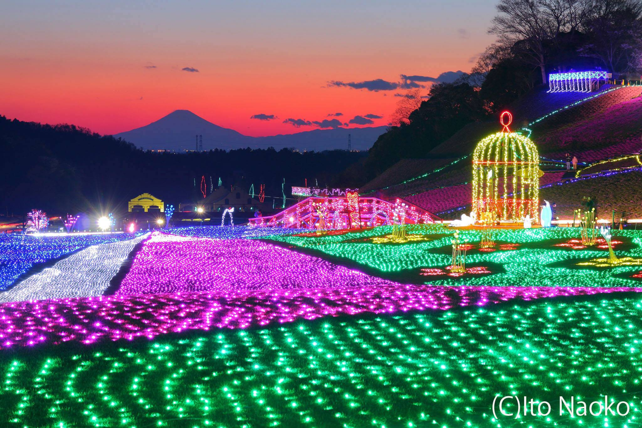 Photo of Like a Fairy Tale – Winter Illumination at Tokyo German Village