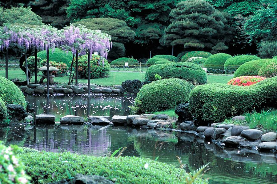 Photo of Kết quả khảo sát xếp hạng địa điểm du lịch tại Nhật đối với du khách nước ngoài
