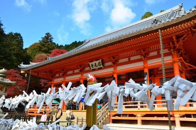 Photo of Omikuji – phong tục rút quẻ của người Nhật